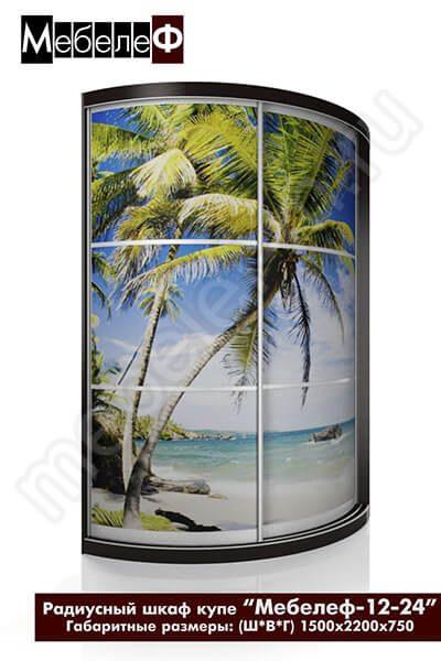 Радиусный шкаф-купе с фотопечатью Мебелеф-12-24