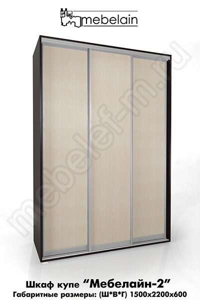 Шкаф-купе без зеркала Мебелайн-2