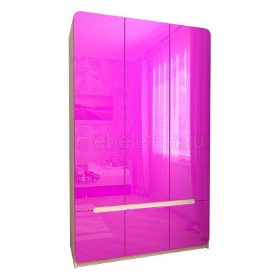 Распашной шкаф Мебелеф 13