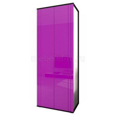 Распашной шкаф Мебелеф 16